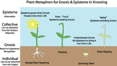 Plant Metaphors for Gnosis & Episteme